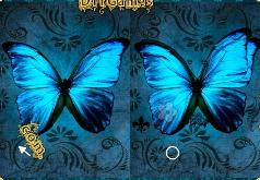 игры отличия светлячков