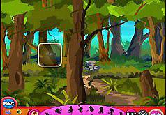 Игры найди обезьянок