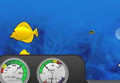 игры наблюдение за рыбками