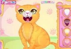 Игры операции кошек