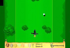 Игры Гарри Поттер: поймай мяч