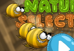 муха и пчела игра