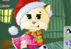 милашка кот игра