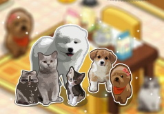 игра дом домашних животных