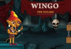 Игры Волшебник Винго