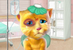 Игры Излечите говорящего кота Рыжика