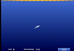 Игры Олимпиада дельфинов