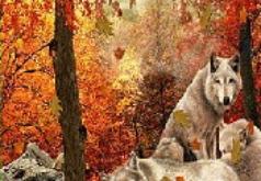 игры волки в лесу