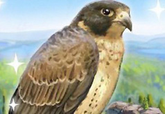 игры храбрый орел