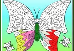 игры раскраски для девочек бабочки