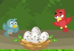 игры на двоих птички в джунглях