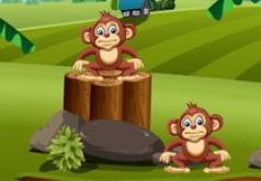 Игра Балансирующие обезьяны
