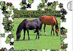 Игра Пазл Две лошадки