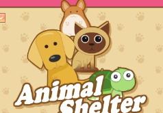 игры приют для собак и кошек