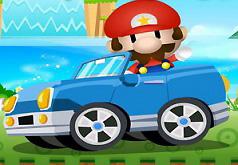 Игра Марио и Чудеса