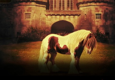 Игра Лошади Найти Различия