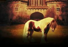 игры находить отличия лошадей