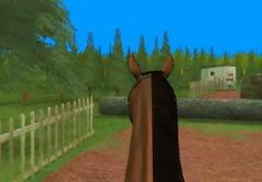 игры бродилки скачки на лошадях 3д