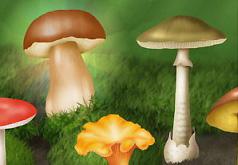 игра собери ягоды грибы