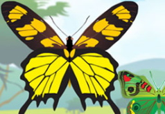 как сделать бабочка игры
