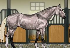 Игры Великолепная лошадь