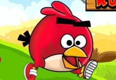 игра где бегает птица