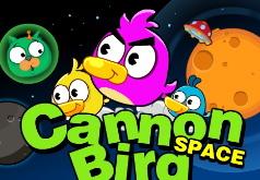игры космические птички