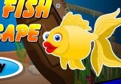 Игра Побег золотой рыбки