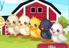 игры кормить цыплят