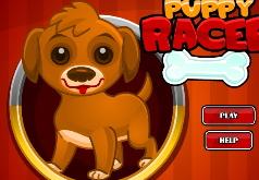 Игры Собаки Забег с препятствиями