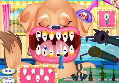 Игры лечение собак