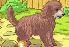 Игра Животные: симпатичный щенок пуделя