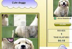Игры милая собака
