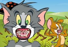 Игры Лечим зубы Тому и Джерри