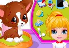 Игры Малышка Барби Лечим раненого щенка