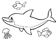игры очаровательные морские жители