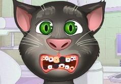Игры Кот Том Проблемы