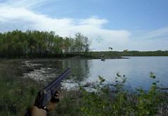 игра охота на зомби на болоте