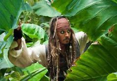 пираты на странных берегах игра