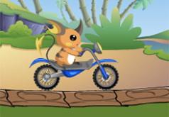 Игры Pokemon Bike Adventure