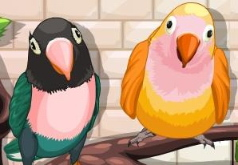 Игры Моя милая птичка