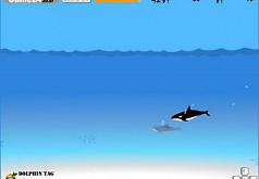 игра рыба дельфин акула