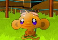 игры головоломки обезьянки