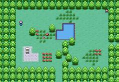 Игры покемоны лесной квест