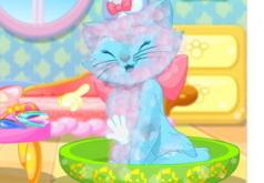 Игры Принцесса Кошка в Парикмахерской