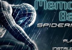 Игры Головоломка Человека паука
