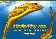 игры на двоих морская жизнь