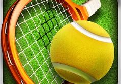 Игра Реальный Теннис 3D