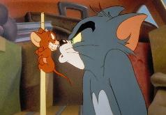 Игры кот и мышь приглашают