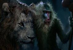 Игра Король Лев 2019 Пазл: Симба